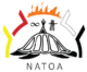 Indigenous Youth Summit 2021